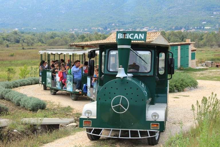 El tren turístico a través de Konavle