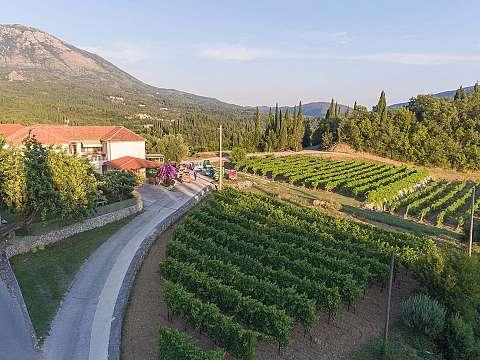 Agrotourism  Brajković